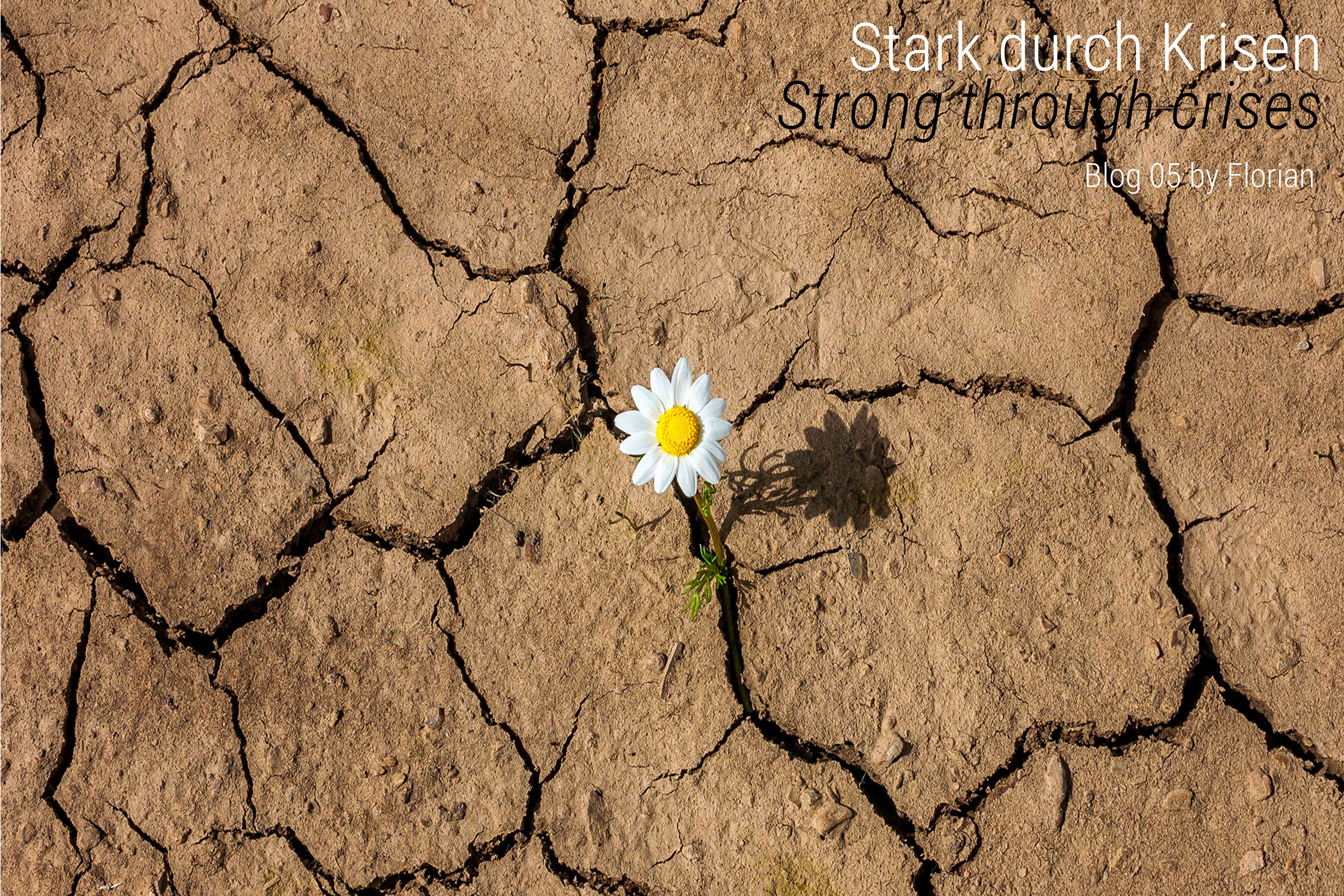 Stark durch Krisen - Strong through crises